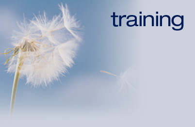 Business Communication and Soft Skills Training