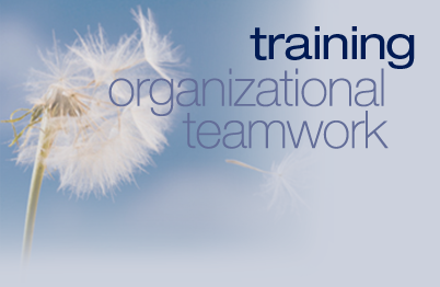 Organizational Teamwork